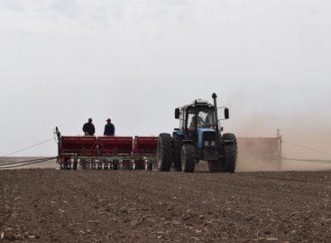 Аграрии Сальского района активными темпами ведут сев озимых