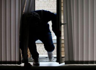 Сальские воры не дремлют: заходят в дома, во дворы и крадут хозяйское добро