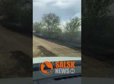 В Сальском районе сгорело пять гектаров сухой травы