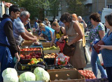 Сальчан и гостей города приглашают на ярмарку