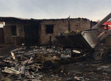 В Сальском районе в субботу сгорели два сенника