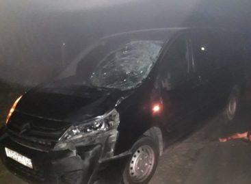 Сальчанин погиб под колёсами иномарки