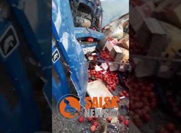 В Сальском районе в аварии погибли два водителя