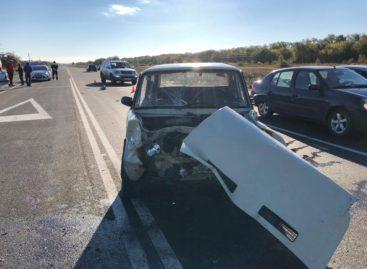 На трассе между Сальском и Гигантом столкнулись две легковушки