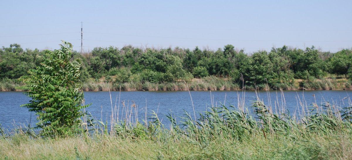 С начала лета на водоемах Ростовской области погибли 7 детей