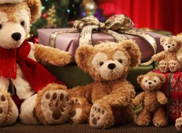 В Сальске стартовала акция «Новый год в кругу семьи»