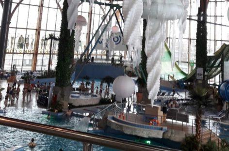 Члены сальского профсоюза побывали в ростовском аквапарке