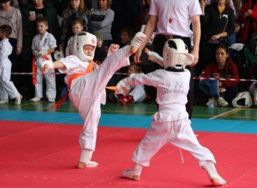 «Кубок Новичка»: малыши-каратисты «Катаны» выступили в Ставрополе