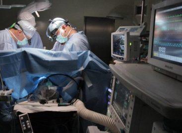 Рак косит людей со страшной силой. Но если его диагностировать на ранних стадиях, то можно вылечить. Это реально
