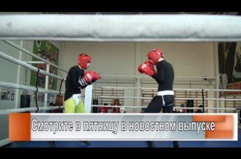 Боксёры ЮФО на сборах в Сальске