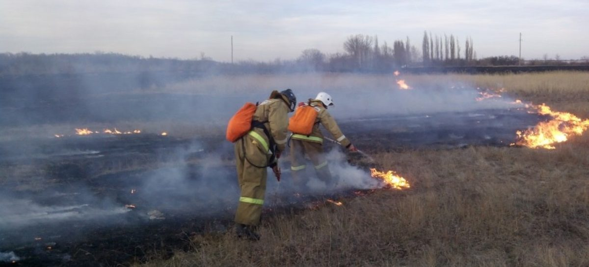 Спасательные службы готовятся к началу «пожарного сезона»