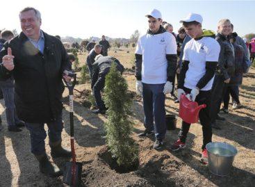 В 2019 году Министерство природы региона проведет большое количество экологических мероприятий