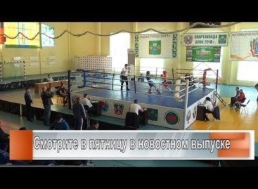Сальск принимает боксёров РО