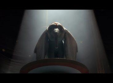 В сальском кинозале даже слоны умеют летать!