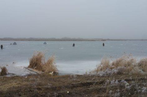 Ростовская область: весеннего подтопления не прогнозируется