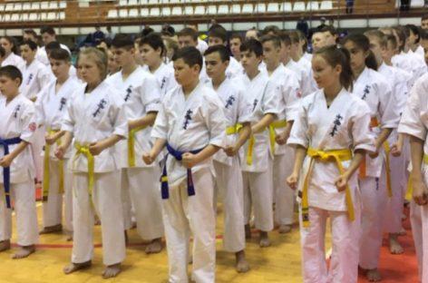 Сальчане успешно выступили на первенстве ЮФО по каратэ киокусинкай