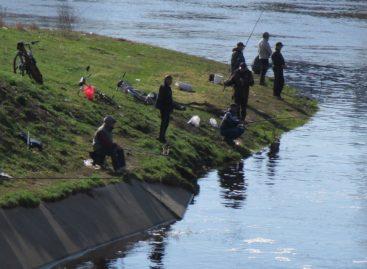 Где, когда и сколько можно ловить рыбы сальским рыбакам?