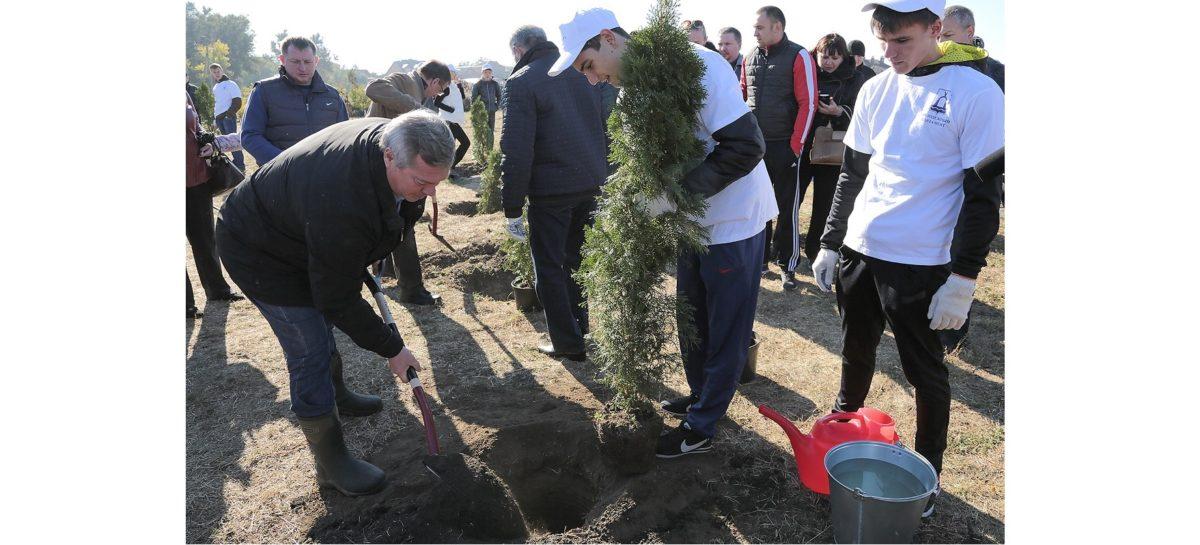 Глава региона пригласил всех дончан поучаствовать в Дне древонасаждения