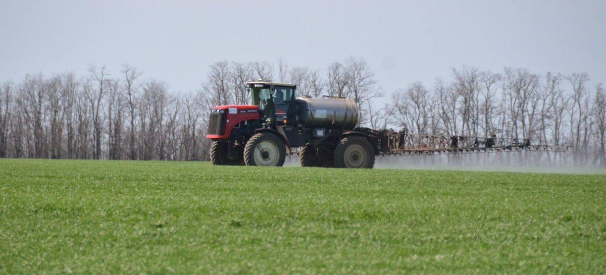 На Дону продолжаются весенне-полевые работы
