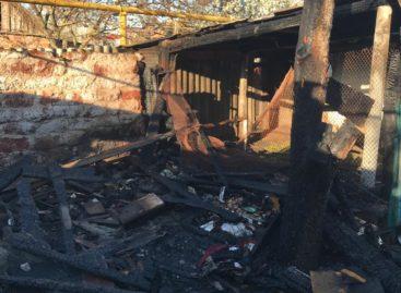Неосторожное обращение детей с огнём привело к пожару сразу в двух домовладениях Сальска