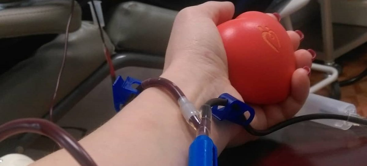 На Дону заработал Южный регистр доноров костного мозга