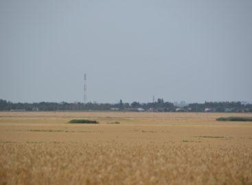 В сельских поселениях Сальского района кипит работа