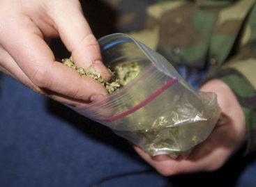 Сальские транспортные полицейские изъяли из незаконного оборота марихуану в крупном размере