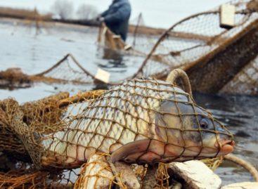 В Сальском районе задержали рыбаков за незаконный лов рыбы