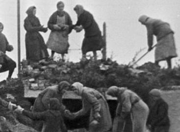 Архивные материалы рассказывают о сальских тружениках тыла