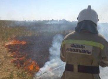 В Сальске и районе продолжают гореть трава и мусор