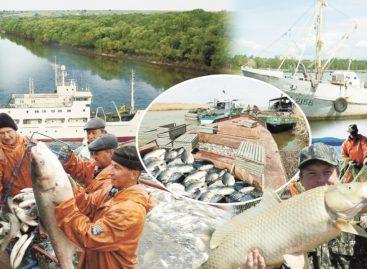 Рыбоходный канал будет