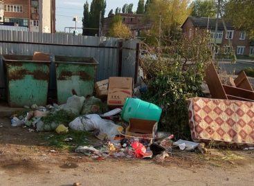 А из нашего окна только мусорка видна