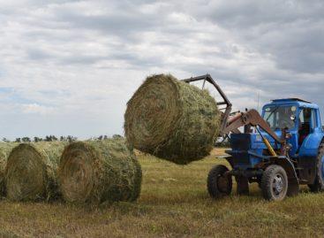 В сельхозпредприятии  «Русь» завершают кормозаготовительную кампанию
