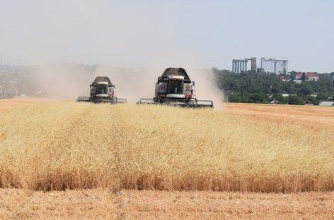 Аграрии Сальского района завершают уборочную кампанию