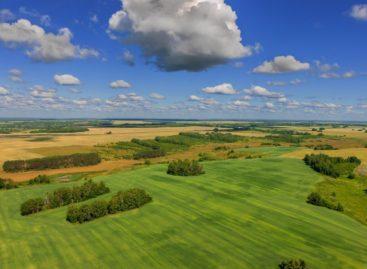 Новый подход к земледелию разрабатывают в Ростовской области