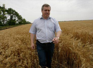 Больше 10 миллионов тонн зерна собрали на Дону