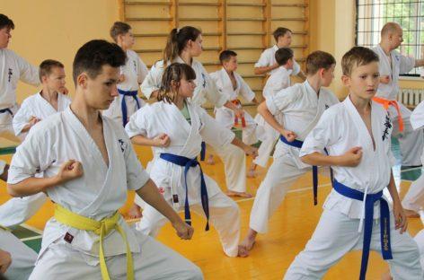 Сальские спортсмены учились каратэ киокусинкай у известного мастера