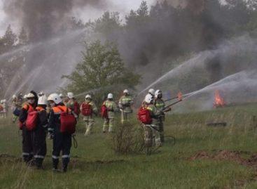 Cистема «Лесохранитель» помогает бороться с пожарами на Дону