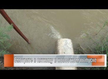 Сальский молзавод: очистка сточных вод