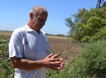 На дачах хутора Бровки нашли боевую гранату Ф-1