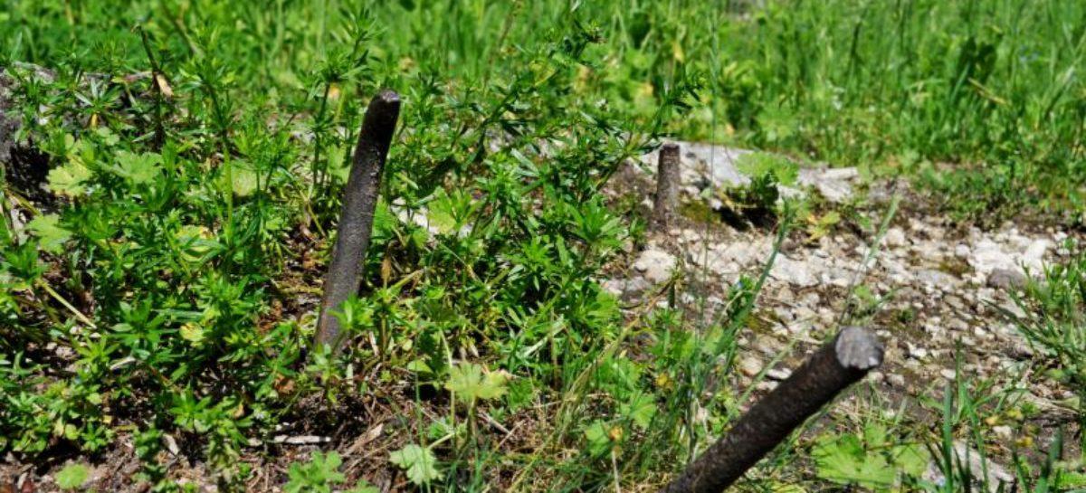 Сальчанин в огороде напоролся на арматуру