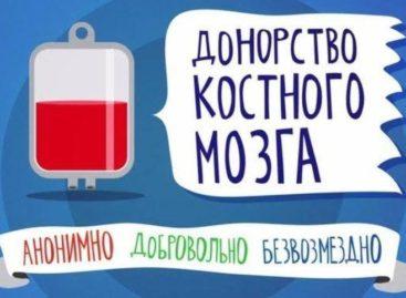 В городе Зверево пройдет акция по донорству костного мозга