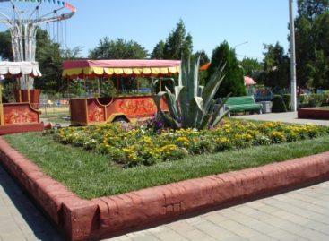 Более 20 муниципалитетов Ростовской области борются за звание лучшего