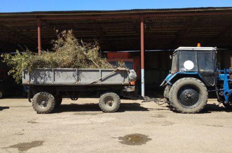 Ново-Сальск долго ждал уборки мусора