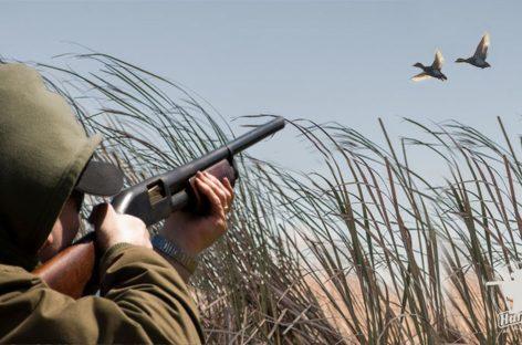 В Сальском районе обозначены сроки охоты