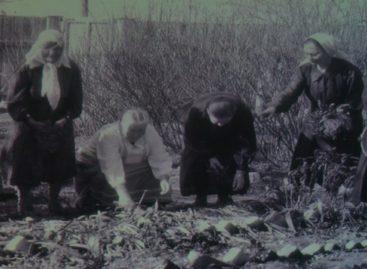 Психоневрологический интернат в Сальске отпраздновал юбилей