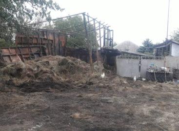 В Сальском районе от детской шалости с огнём загорелся сенник и погиб бычок