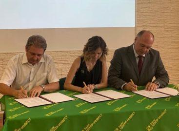 Трехстороннее соглашение о сотрудничестве в сфере образовательной деятельности по ИТ-направлению подписано в Ростове