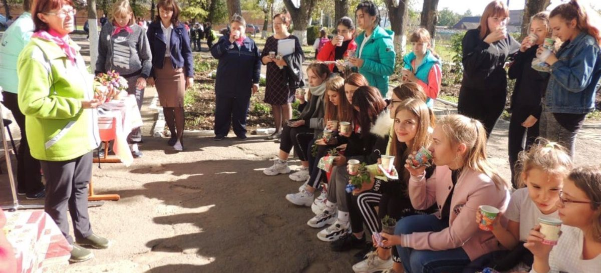 Знания и спорт — сила!  Юные волонтеры и добровольцы «серебряного» возраста обменялись знаниями о ЗОЖ