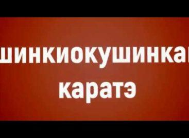 Сальские каратисты клуба «Катана» побывали в гостях у «Донских Соколов»